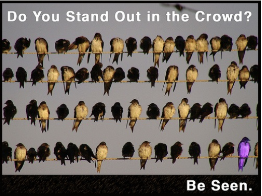 stand out in the crowd